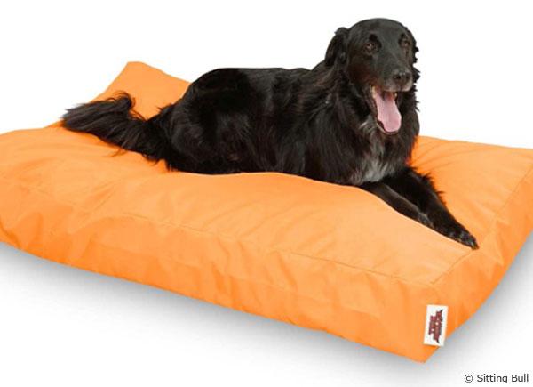 Der Pet Bull ist der Hunde-Sitzsack für den Hund von heute.